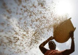 Traditional cleansing of grain