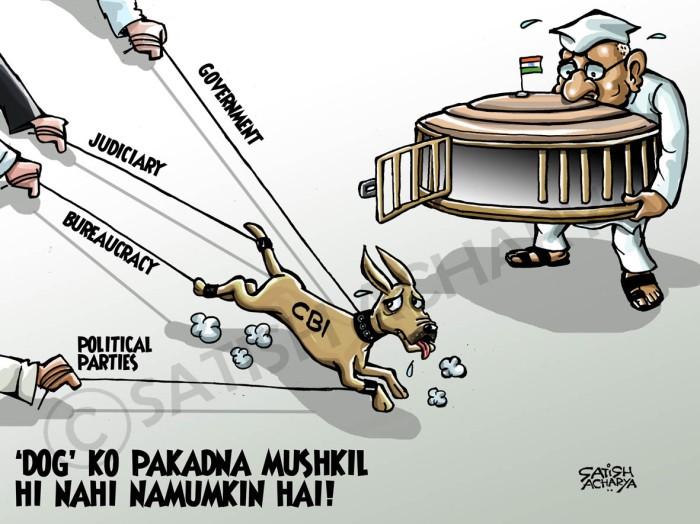 CBI-dog