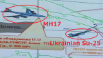 MH17 crash 03