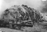 08 German soldiers' corpses cremated enmass -Dresden, Feb, 1945