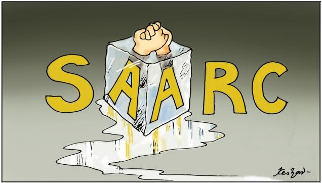 SAARC hand shake