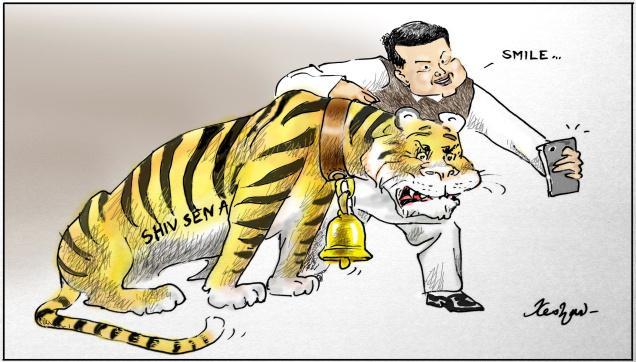 Belling Tiger