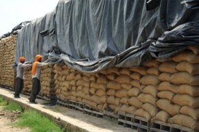Food security is now in the hands of Trade Facilitation Agreement