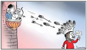 AAP cap's feathers
