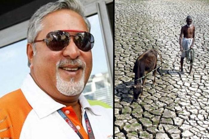 Malya vs Farmer
