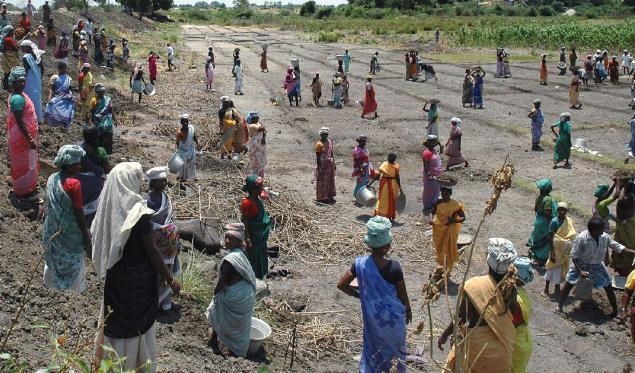 MGNREGA works